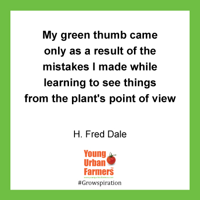 My green thumb came only as a result of the mistakes I made while learning to see things from the plant's point of view. ~H. Fred Dale (Thanks, Anne)