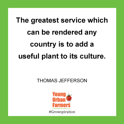 The greatest service which can be rendered any country is to add a useful plant to its culture. -Thomas Jefferson