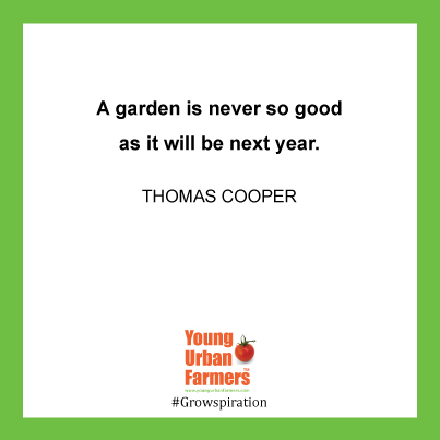 A garden is never so good as it will be next year - Thomas Cooper