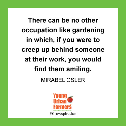 There can be no other occupation like gardening in which, if you were to creep up behind someone at their work, you would find them smiling.  Mirabel Osler