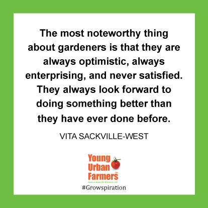 The most noteworthy thing about gardeners is that they are always optimistic, always enterprising, and never satisfied. They always look forward to doing something better than they have ever done before. -Vita Sackville-West