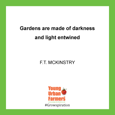 """Gardens are made of darkness and light entwined.""  ― F.T. McKinstry, Crowharrow"