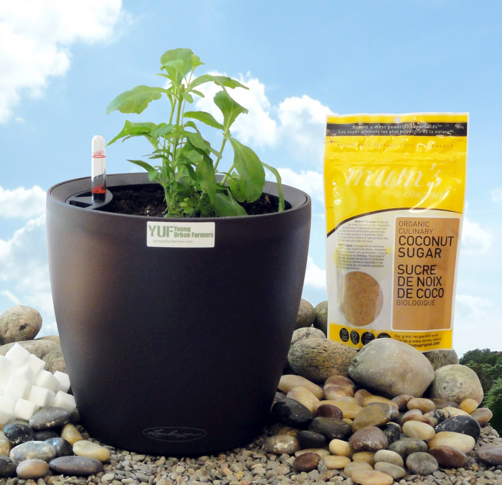 YUF Stevia Mothers Day 2012 Promo