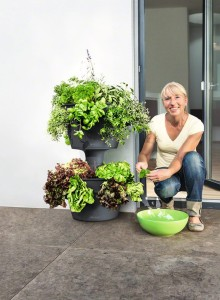 Cascada Color Planter