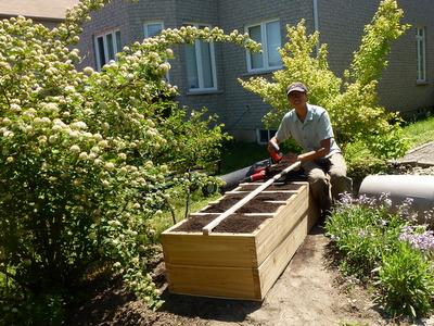 Urban gardener online banner ad advertisements t for Eastside urban farm and garden