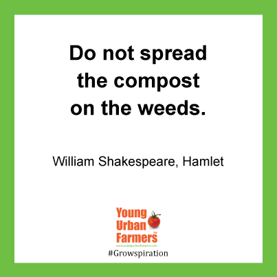 """Do not spread the compost on the weeds."" William Shakespeare, Hamlet"