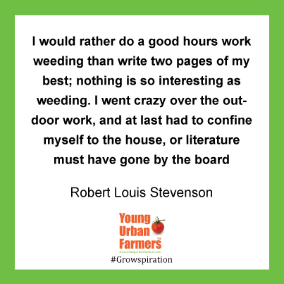 """I would rather do a good hours work weeding than write two pages of my best; nothing is so interesting as weeding. I went crazy over the outdoor work, and at last had to confine myself to the house, or literature must have gone by the board."" - Robert Louis Stevenson, 1890"