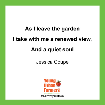 """""As I leave the garden I take with me a renewed view, And a quiet soul.""   Jessica Coupe"""