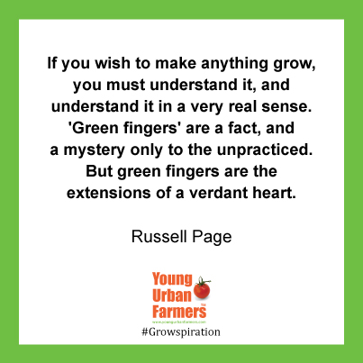 """If you wish to make anything grow, you must understand it, and understand it in a very real sense. 'Green fingers' are a fact, and a mystery only to the unpracticed. But green fingers are the extensions of a verdant heart."" Russell Page, The Education of a Gardener"
