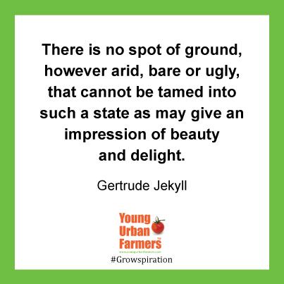 There is no spot of ground, however arid, bare or ugly, that cannot be tamed into such a state as may give an impression of beauty and delight. Gertrude Jekyll