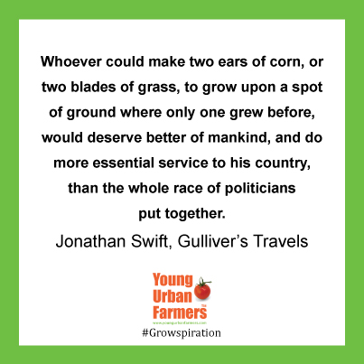 Whoever could make two ears of corn, or two blades of grass, to grow upon a spot of ground where only one grew before, would deserve better of mankind, and do more essential service to his country, than the whole race of politicians put together - Jonathan Swift, Gulliver's Travels