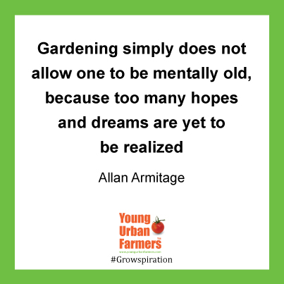"""Gardening simply does not allow one to be mentally old, because too many hopes and dreams are yet to be realized - Allan Armitage"""
