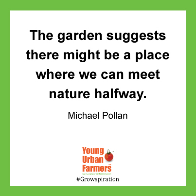 The garden suggests there might be a place where we can meet nature halfway. Michael Pollan