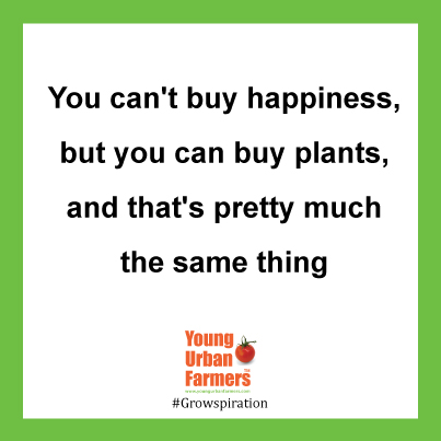 You can't buy happiness, but you can buy plants, and that's pretty much the same thing