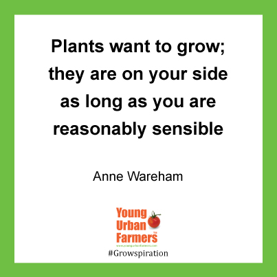 """Plants want to grow; they are on your side as long as you are reasonably sensible."" Anne Wareham"