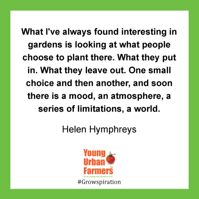 """What I've always found interesting in gardens is looking at what people choose to plant there. What they put in. What they leave out. One small choice and then another, and soon there is a mood, an atmosphere, a series of limitations, a world."" Helen Humphreys, The Lost Garden"