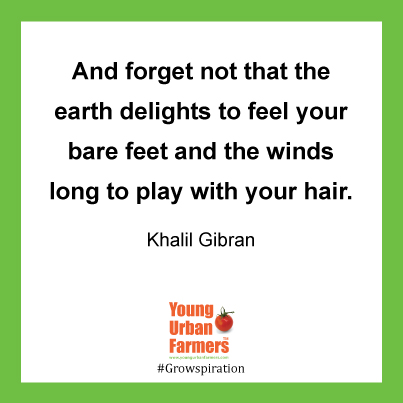 And forget not that the earth delights to feel your bare feet and the winds long to play with your hair. Khalil Gibran