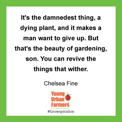 """It's the damnedest thing, a dying plant, and it makes a man want to give up. But that's the beauty of gardening, son. You can revive the things that wither."" Chelsea Fine, Best Kind of Broken"