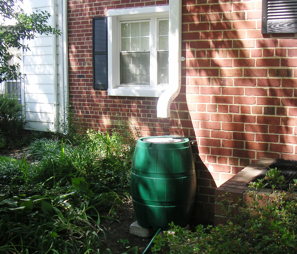 rain barrel garden flickr